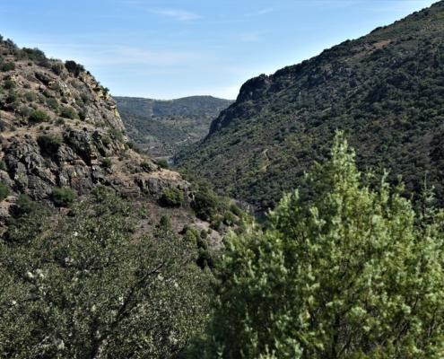 paysage typique Trás-os-Montes
