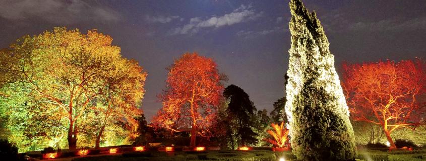 Jardin Botanique de Belém