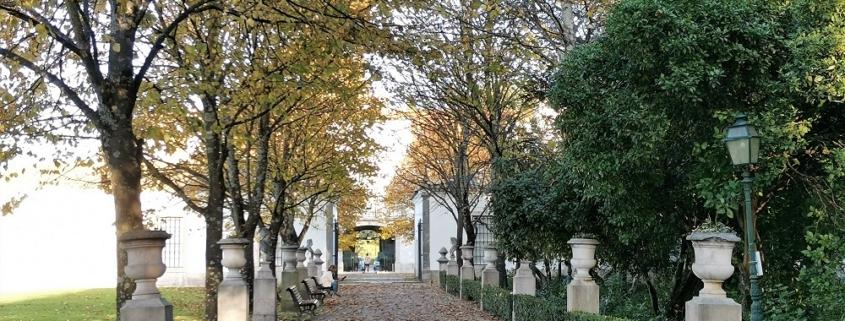 Au palais Pimenta exposition sur les potagers et jardins de Lisbonne