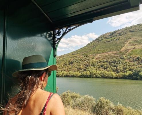 Le Douro depuis le train à vapeur